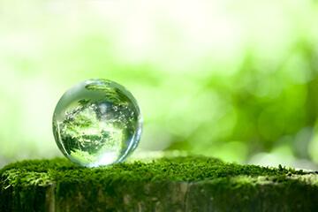 マイクロバブルによる水質浄化